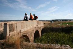Puente de Mesegoso - Camino Santiago Soria