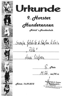 Horster Hunderennen im September '12
