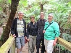 kurzer Walk im Rainforest