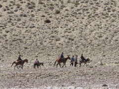 Eselkarawane in Afghanistan