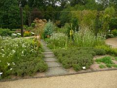 ... eine Oase zum Entspannen und Genießen - der Botanische Garten.