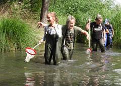 Kinder keschern im Fluss Lutter in Königslutter Gewässeruntersuchung