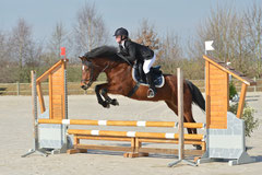 Quelly Pearl, TDA Bonneval Milsay Jump (photo L'Echo des Poneys)