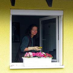 Fenster putzen im Vereinshaus