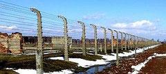 """Zigeunerlager"" Auschwitz-Birkenau heute, Foto: Eugen Wahl, Nürtingen, alle Rechte vorbehalten!"
