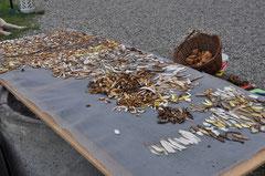 Trocken der gesammelten pilze