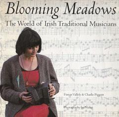 アイルランド文化 書籍
