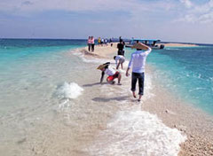 珊瑚バラスでできた島。毎年形が変わっている