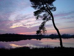 Abendstimmung am Wollingster See