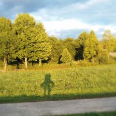 Yogaübung Baum