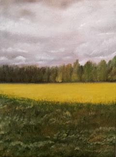Landschaft gemalt mit Ölfarben, Raps