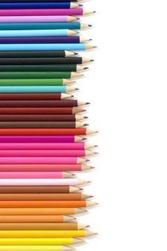色も長さも違う子の特性を活かします