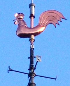 le coq de l'Hôtel de Ville de Doullens- Décembre 2011