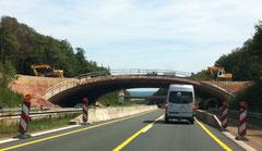 Grünbrücke im Bau