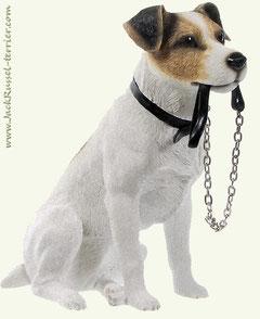 Приучение собаку к поводку
