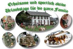 Göllhof in Golling