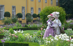 Lavendelträume  Foto: G. Gyo