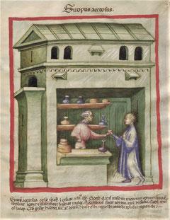 Tacuinum sanitatis Siropus acetosus - fol. 95r.