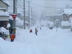 東京の寒さは知れていますね!