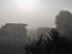 Sonnenstrahlen lösen Nebel auf