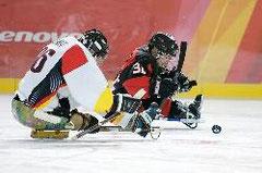 Bild: Sledge-Eishockey