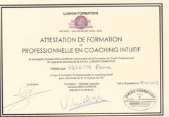 Pierre Villette, coach intuitif, coach certifié PNL, Pierre Villette, coach, certifié, PNL, Coaching de vie, PNL, coach, certifie, PNL, Pierre Villette, Coach paris 16