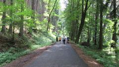 Wanderurlaub im Oberpfälzer Wald in Mähring