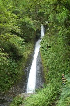 """die """"White Lady"""" der berühmte Wasserfall in der Gorge of Lydford"""
