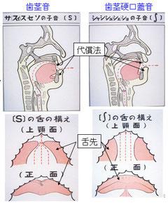 図9 摩擦音の舌の構え