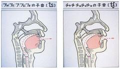 図10 破擦音の舌の構え