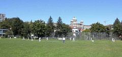 Berne Cricket Club