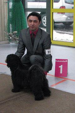 CAC Glauchau 2011_Tibet Terrier_Peter Künzel