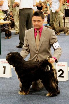 Peter Künzel Oelde Tibet Terrier