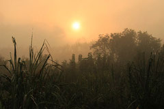 Einmal mehr ein mystischer Sonnenaufgang.