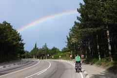 Nach Gewitter: Regenbogen zur Belohnung.