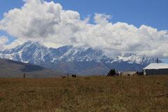 Im Land der tibetischen Nomaden.