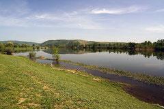 Malerisch: Entlang des Dunav-Tisa Kanals.