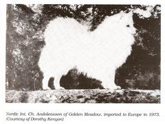 Andoleasson of Golden Meadow