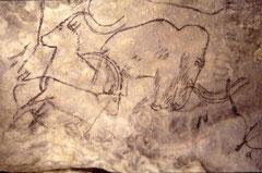 Grotte von Rouffignac