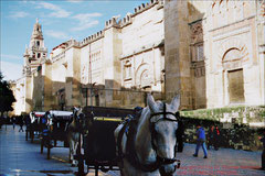 Córdoba, Westfassade der Mezquita