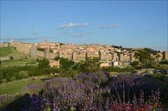 Ávila, Panorama mit Stadtmauer