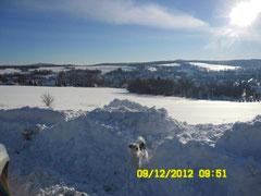Lia im Schnee