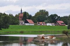 Blick von der Alten Elbe  auf Klein Beuster mit St.Marien  - zum Vergrößern 1x klick auf das Bild