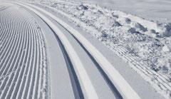 Ski alpin und Skilanglauf