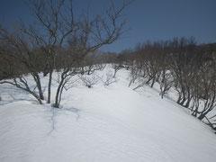 標高1000M付近。まだたっぷりの雪。