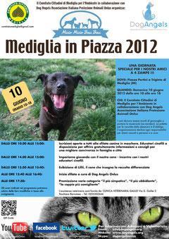 dog angels onlus a mediglia in piazza