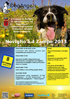 dog angels a Noviglio