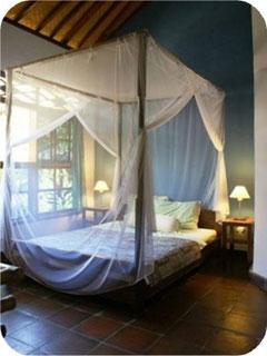 Moskitonetze, Deckenventilatoren, grosse Fenster in jedem Zimmer, Ventilationsfenster mit Insektenschutz, ohne Klimaanlage