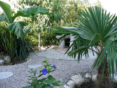 Blick auf meine neue Gartengestaltung