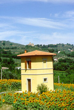 Apartment The Torretta - Bevagna - Umbria